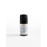 Lavendel/Lavandula angustifolia
